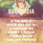 bugturdia2-poster-web